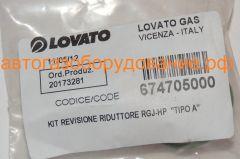 Ремкомплект редуктора LOVATO RGJ НР тип А 674705000